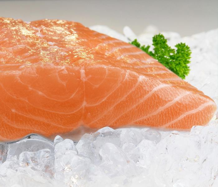 Food Shooting für die Genossenschafts-Fangflotte Kutterfisch